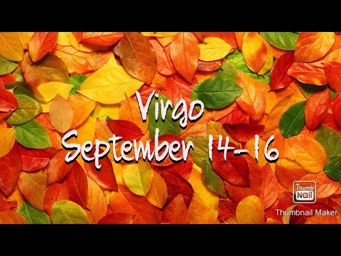 Horoscope Memes & Quotes | Zodiac star signs, Zodiac signs
